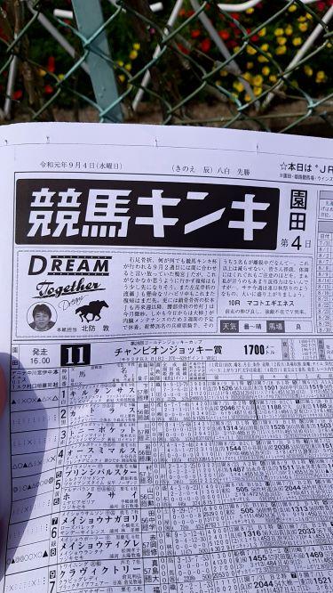 f:id:sekiwakedesu:20190905090745j:plain