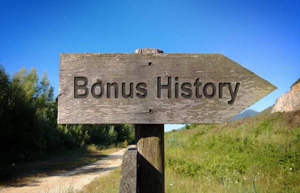 ボーナス歴史