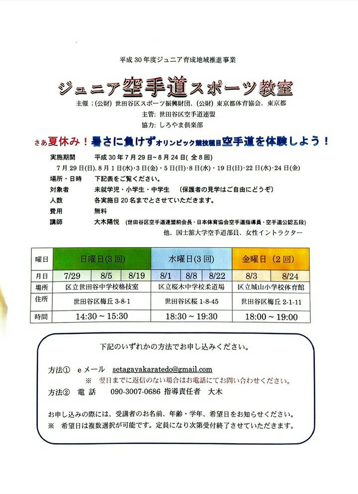 f:id:sekudo:20180729150103j:plain