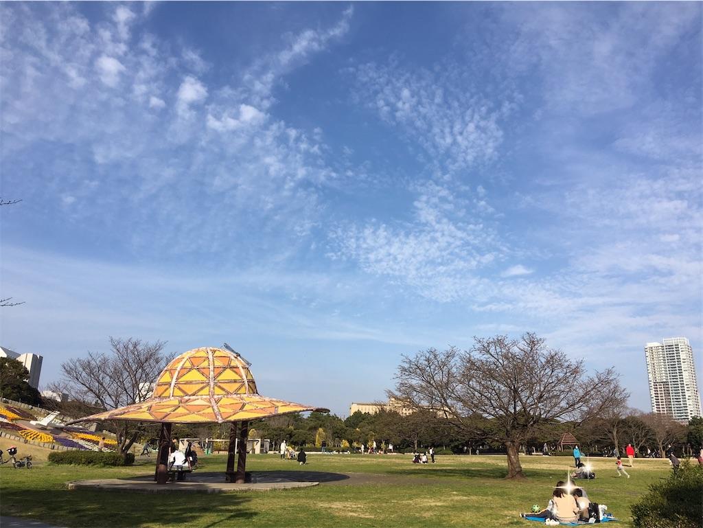 f:id:selcon-japan:20200316150739j:image