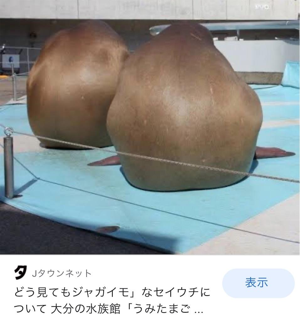f:id:selcon-japan:20200410173148j:image