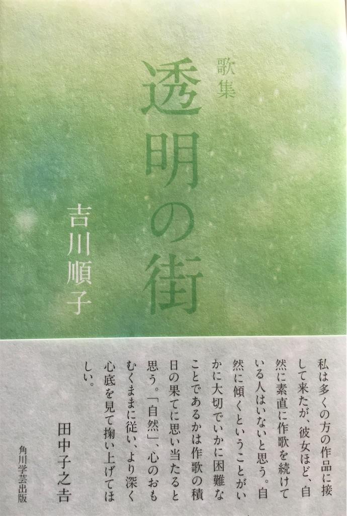 f:id:selcon-japan:20200411153913j:image