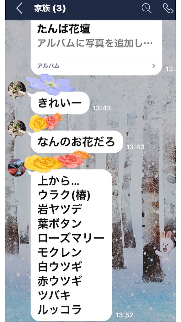 f:id:selcon-japan:20200413141659j:image