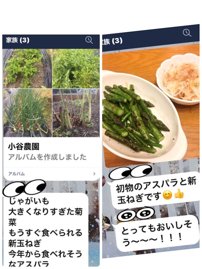 f:id:selcon-japan:20200413184000j:image