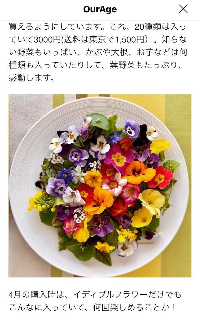 f:id:selcon-japan:20200423163152j:image