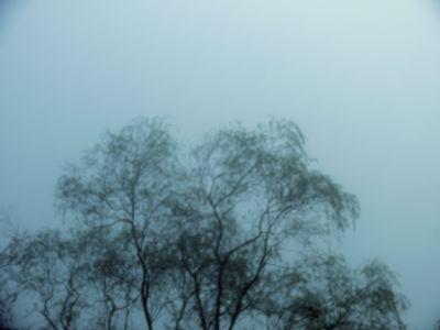 f:id:selino:20101108071138j:image