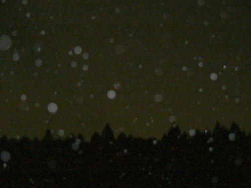 f:id:selino:20110305203121j:image