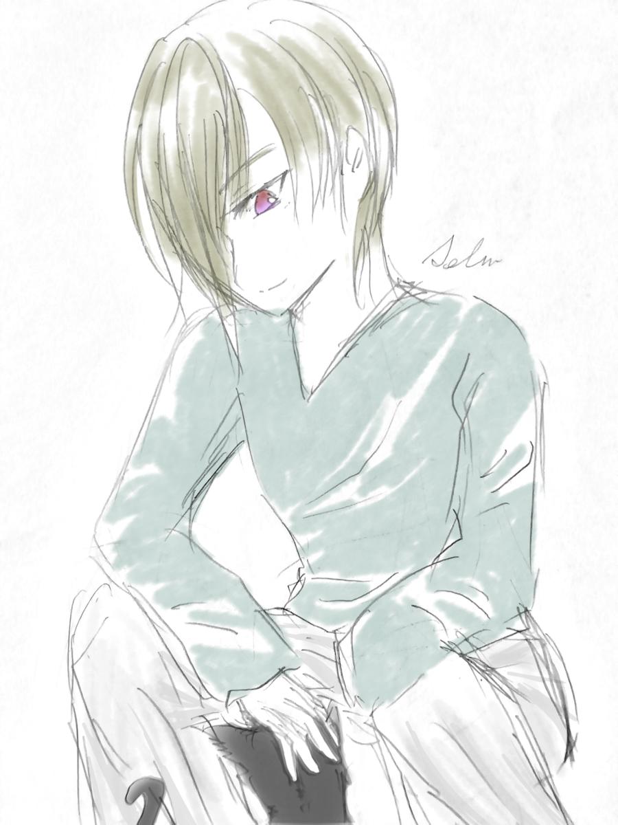 f:id:sena_kureha:20200109211040p:plain