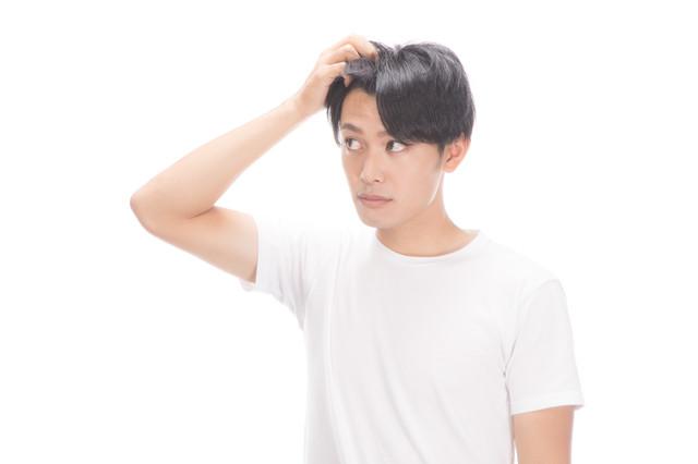 f:id:senaharu:20180128211808j:plain