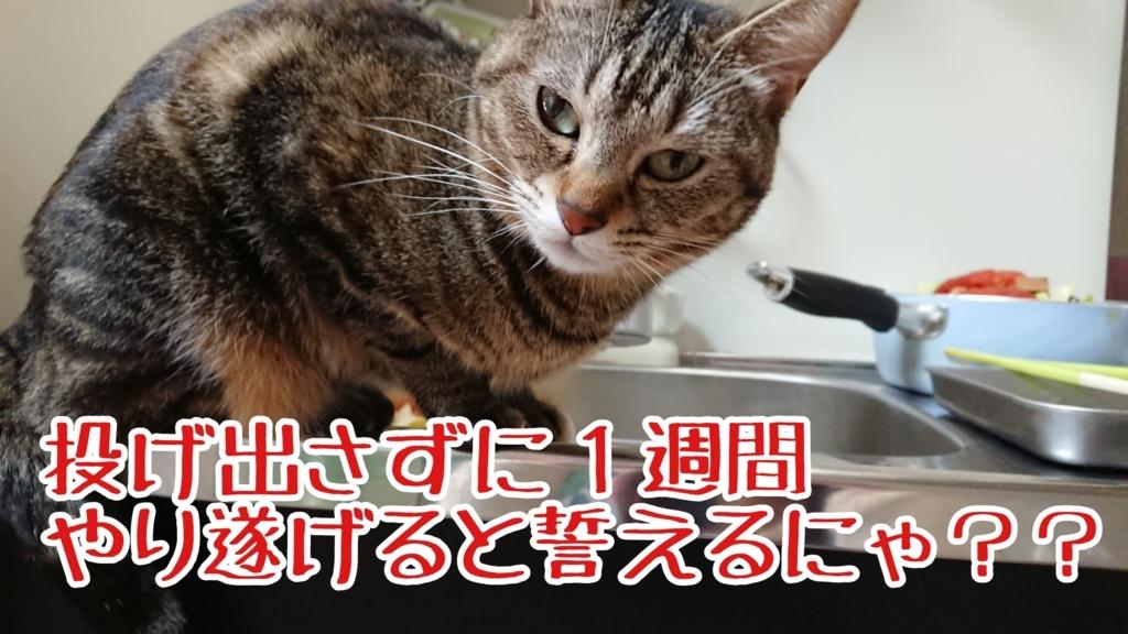 f:id:senaharu:20180224145544j:plain