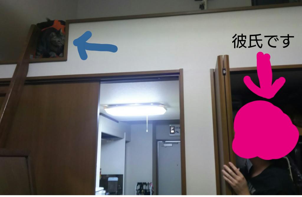 f:id:senaharu:20180530093247p:plain