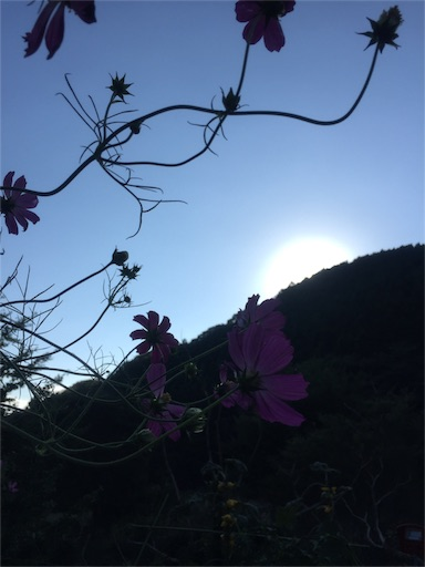 f:id:senaka45:20161017140151j:image