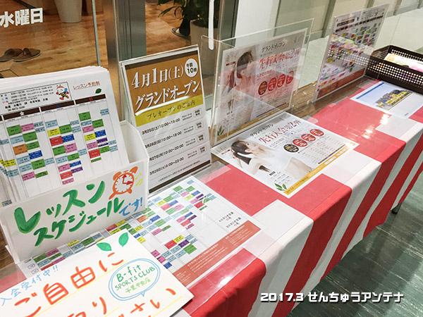f:id:senchu-min:20170325163313j:plain
