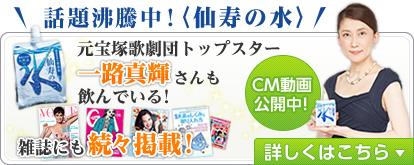 f:id:senjunomizu:20151009144925j:plain