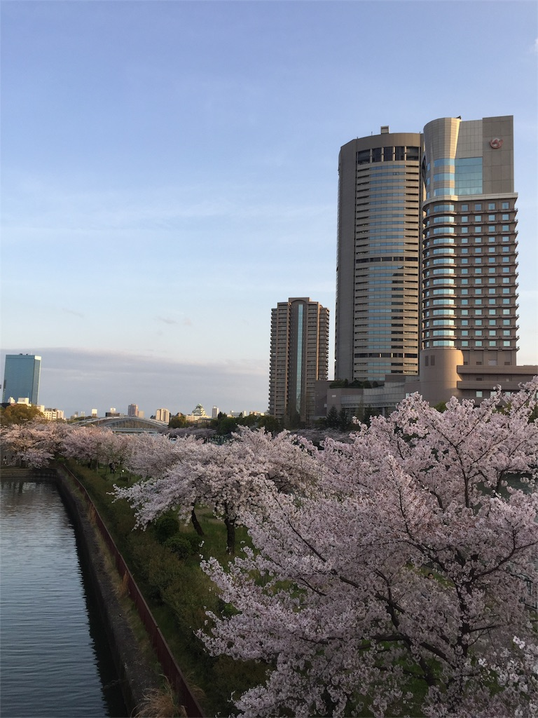 f:id:senkyo_bird:20170414010237j:image