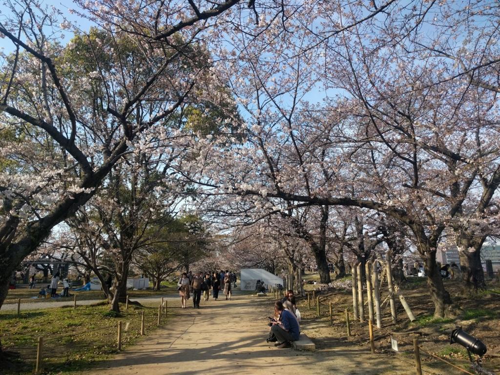 f:id:senn-shi:20170415221840j:plain
