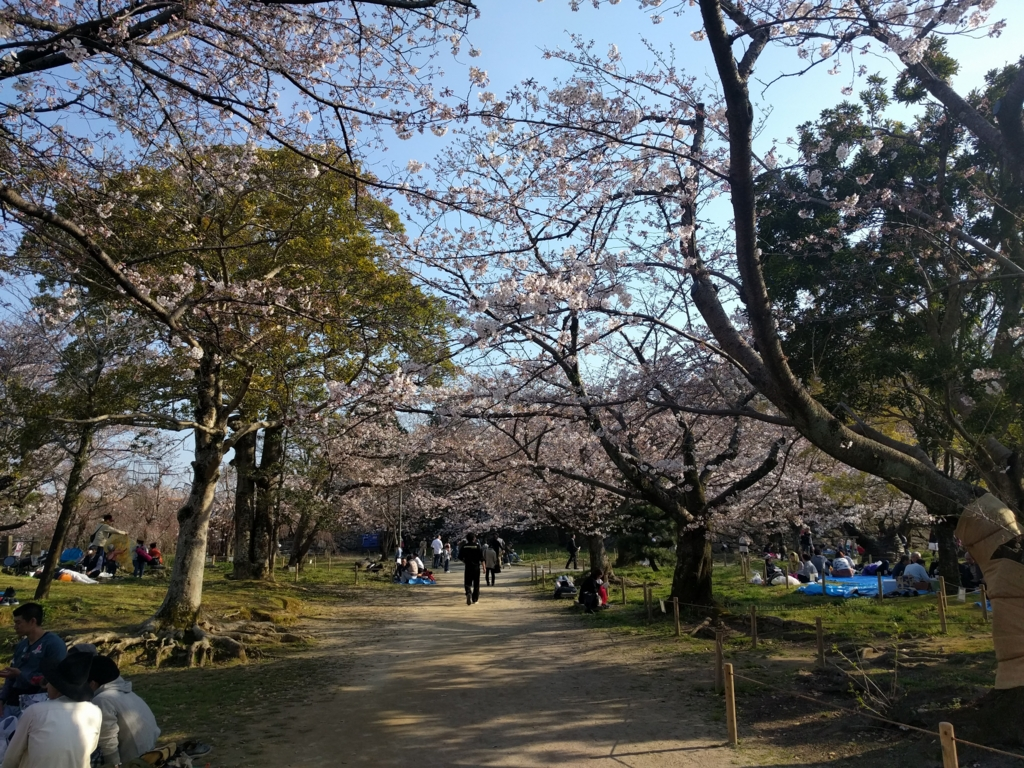 f:id:senn-shi:20170415222030j:plain