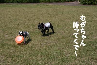 f:id:senna-udon:20070514145450j:image