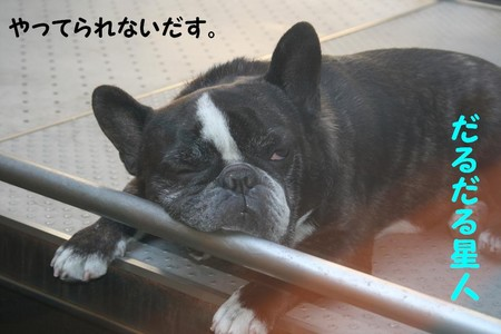 f:id:senna-udon:20070606171540j:image