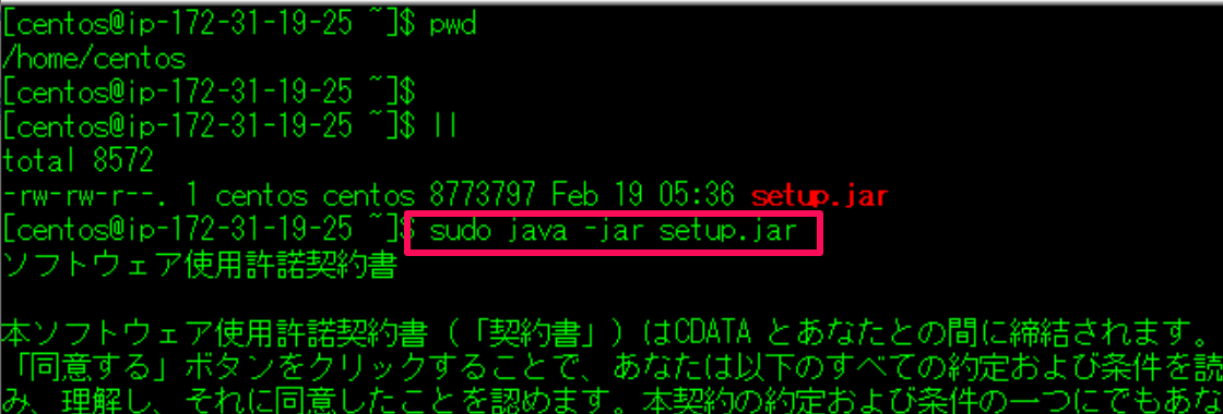 f:id:sennanvolar44:20200221181301p:plain