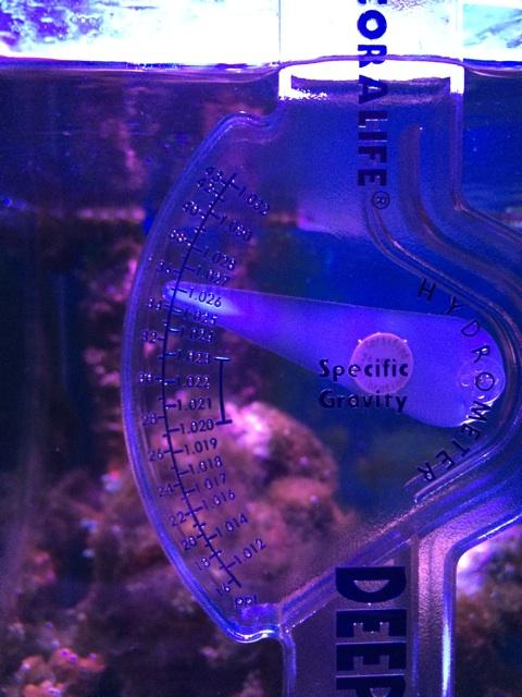 ハイドロメーターで海水水槽の比重を測る