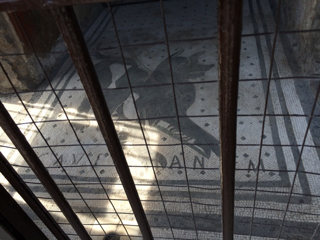 ジョジョの奇妙な冒険5部の聖地、ポンペイ遺跡の犬のレリーフはマン・イン・ザ・ミラーとの戦闘の舞台です