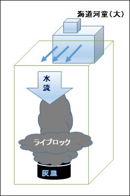イエローヘッドジョーフィッシュに前面に巣を作らせるための水流の模式図
