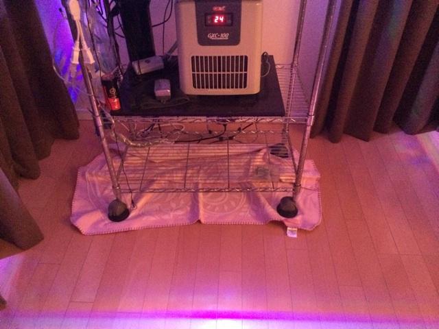 毛布を使えば思い家具をフローリングを滑らせて一人で動かせる