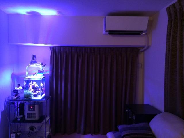 室内で水槽を置くのにベストな場所は直射日光の差し込まない明るい場所、電気製品から離す、水をすぐ捨てられるベランダの近く。