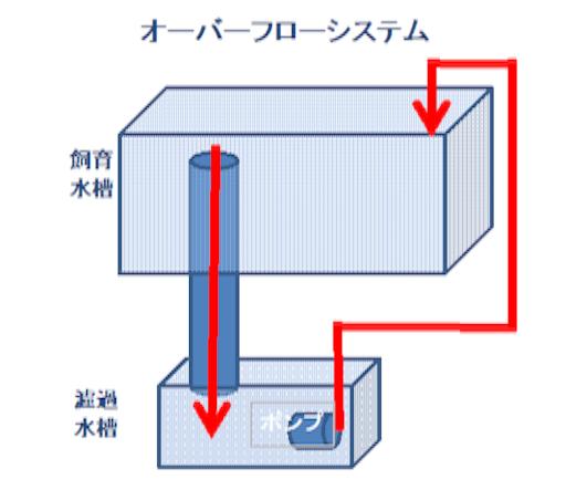 オーバーフローシステムの仕組みを図解します。上に飼育水槽、下に濾過水槽の2槽形式になっています。上の飼育水槽から重力で下の濾過水槽に水を落とし、濾過水槽から水中ポンプで飼育水槽に水をくみ上げる方法で飼育水を循環させています。