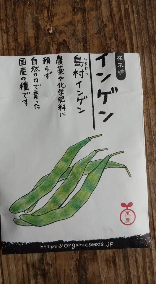 f:id:senninsou_niwa:20210626113059j:plain
