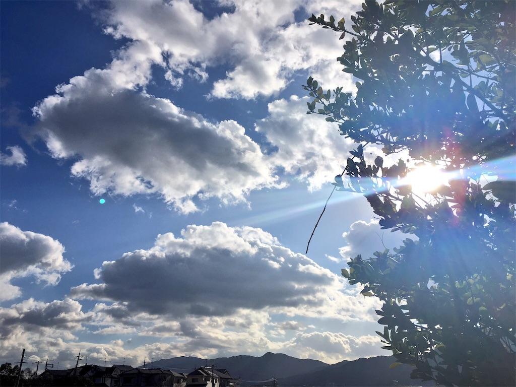 f:id:senno_megumi:20170307011442j:image