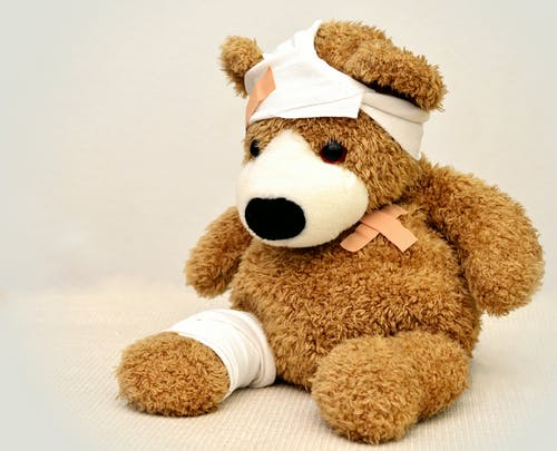 愛犬の怪我、病気