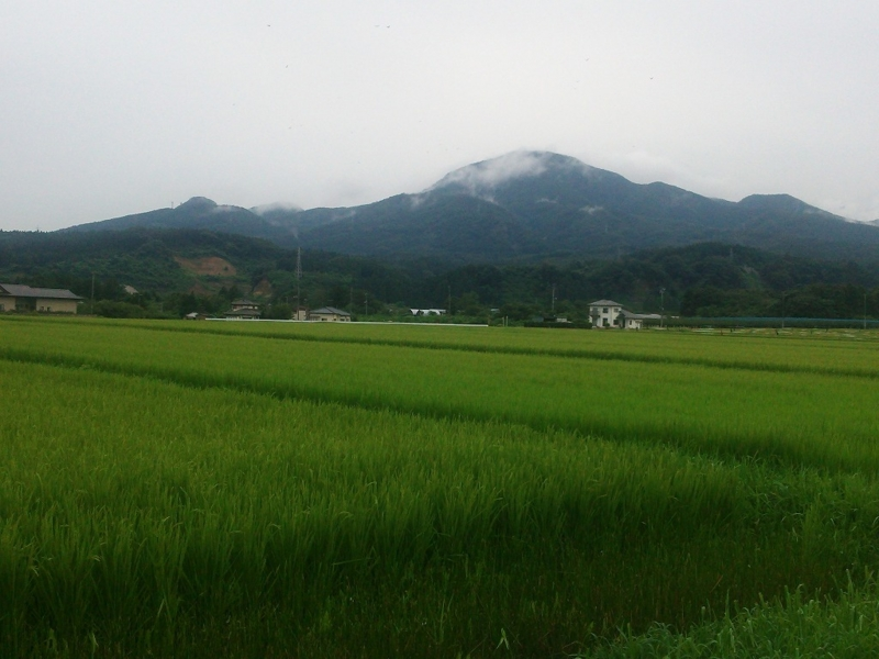 f:id:senri_gusuku:20140831224823j:image:w360