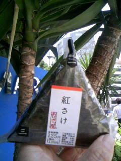 f:id:senseki:20140602115145j:image