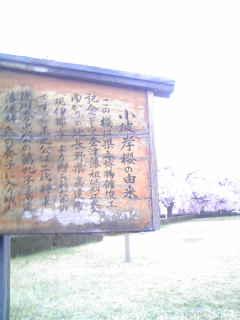 f:id:senseki:20190419101829j:plain
