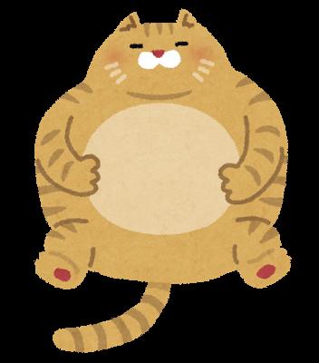猫忍、父上に似た猫ちゃん