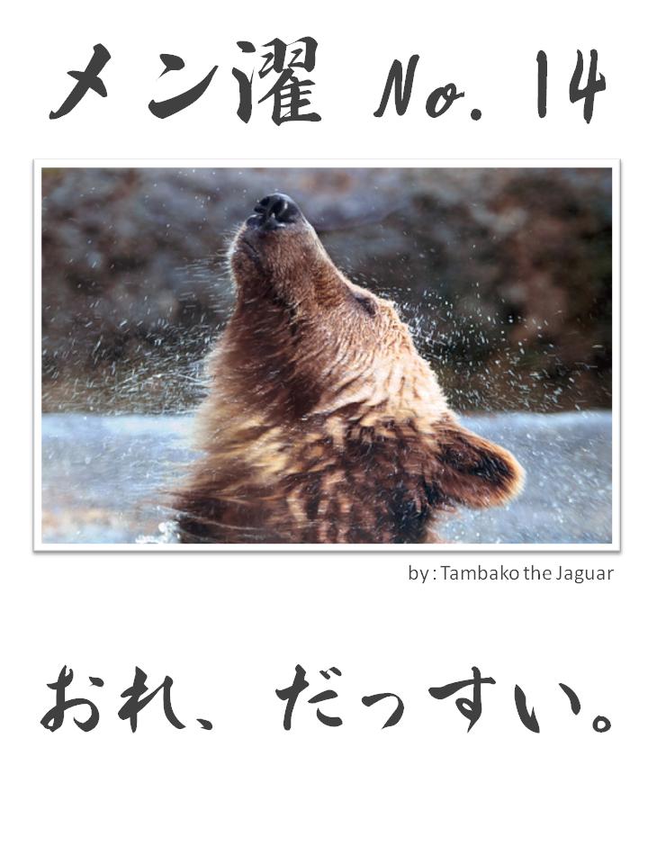 メン濯(めんたく)No.14