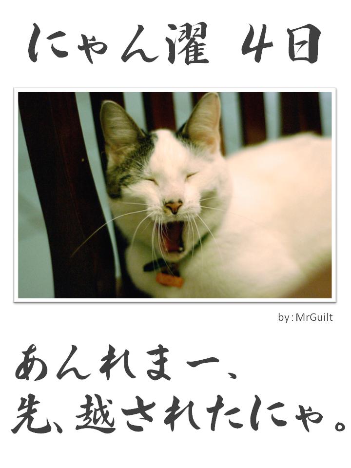 にゃん濯(にゃんたく)4日