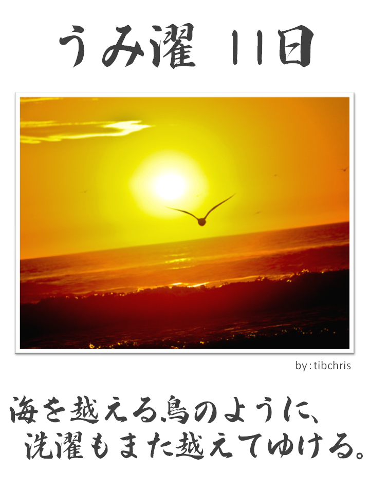 うみ濯(うみたく)11日