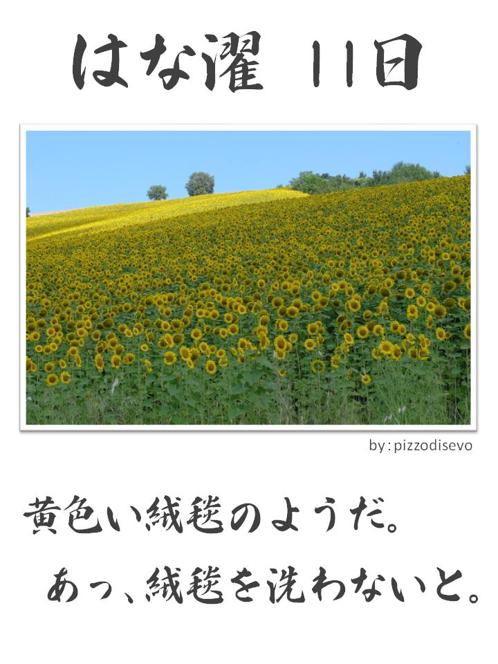 はな濯(はなたく)11日