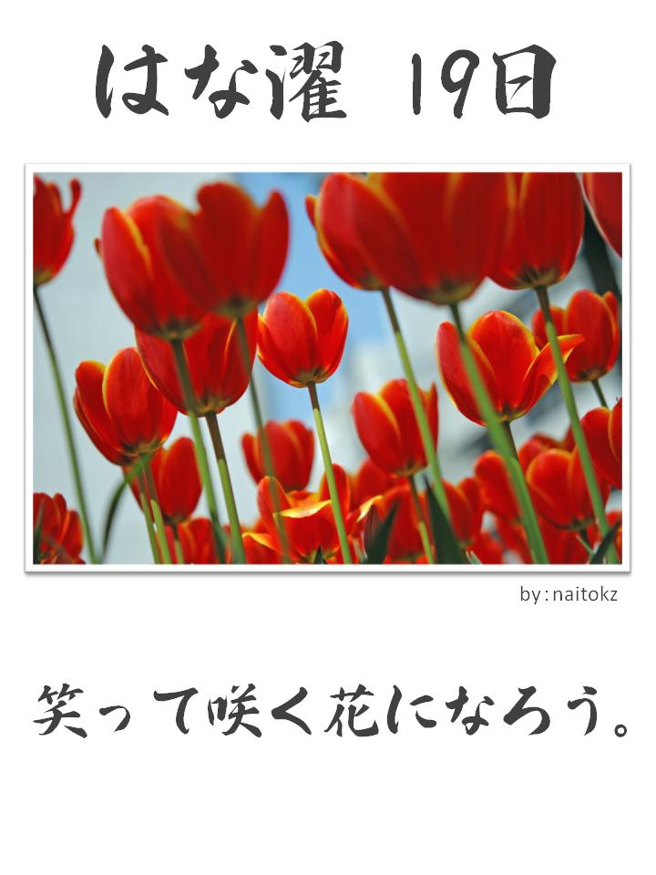 はな濯(はなたく)19日
