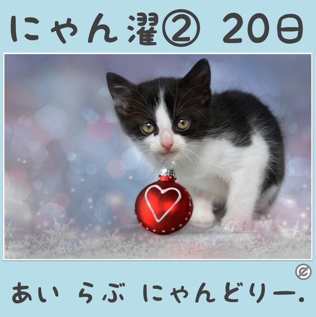にゃん濯②(にゃんたく)20日