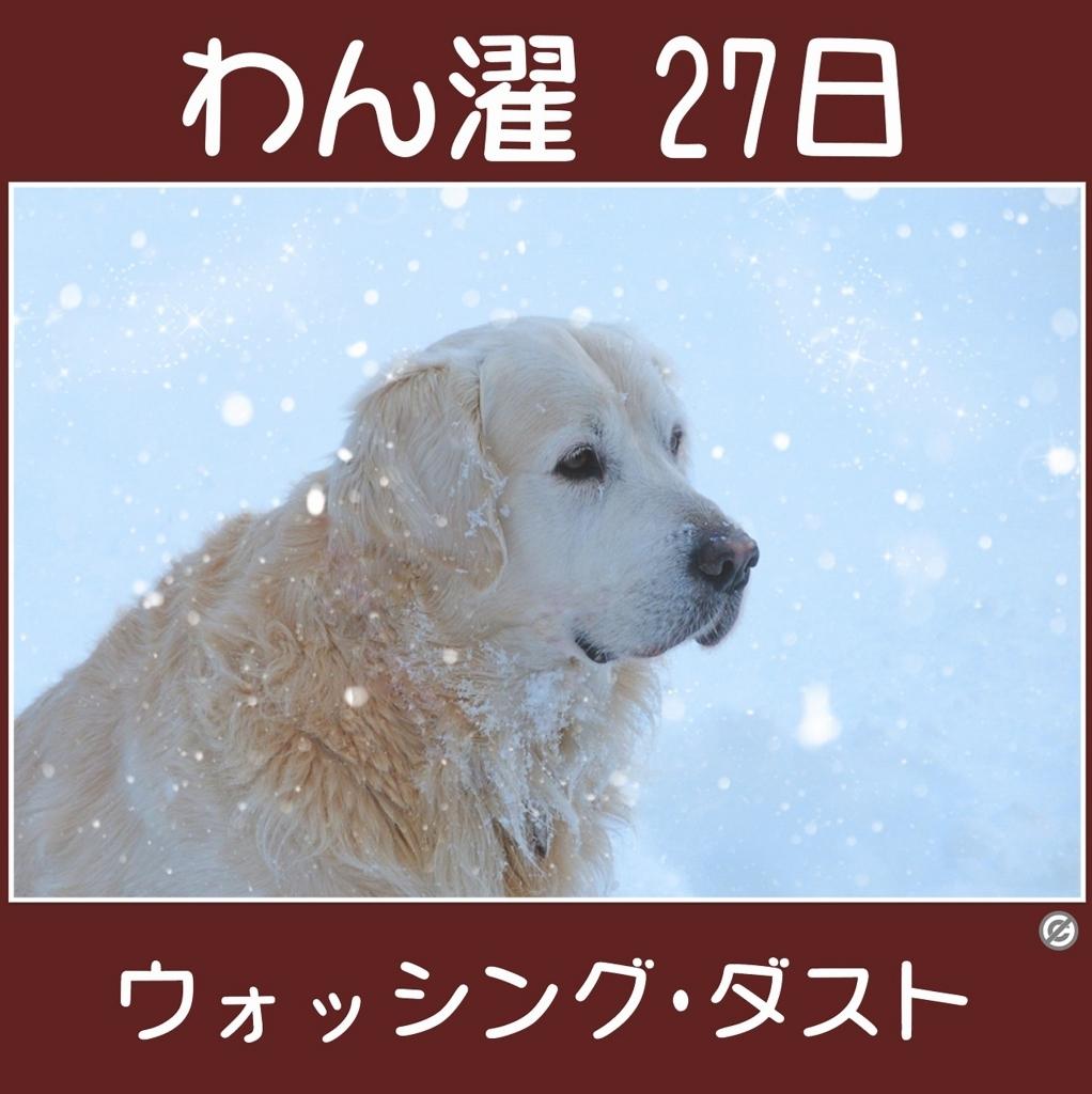わん濯(わんたく)27日