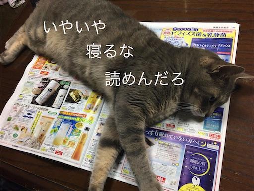 f:id:seori88:20200306224827j:image