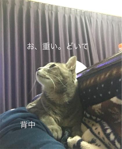 f:id:seori88:20200306225011j:image