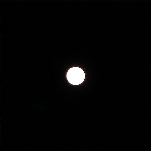 f:id:seori88:20200409005123j:image