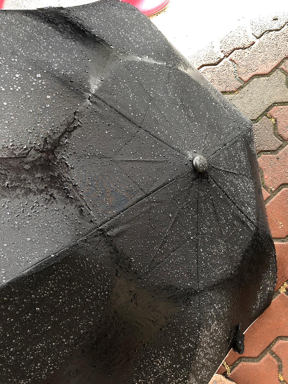 撥水性を取り戻した〈ブラント〉の傘