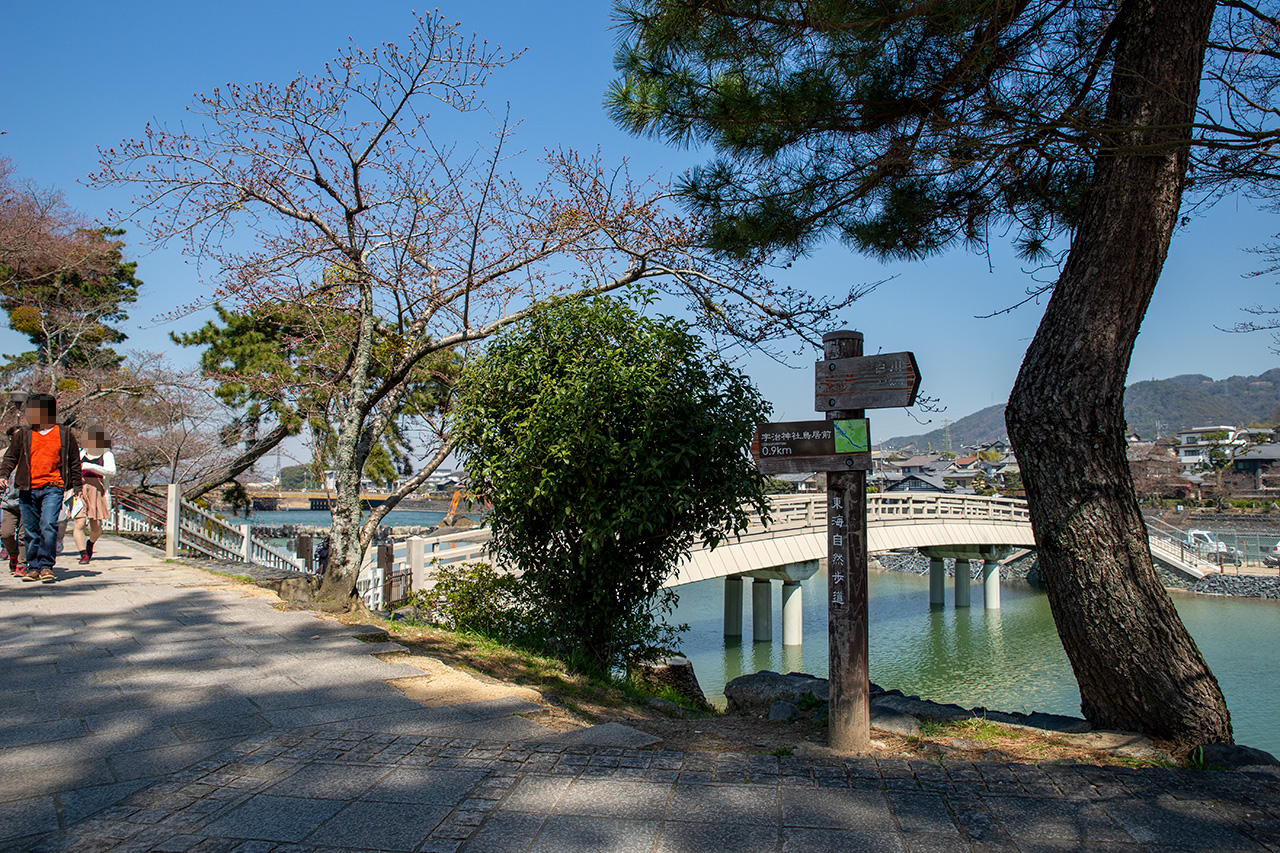 宇治川橘橋