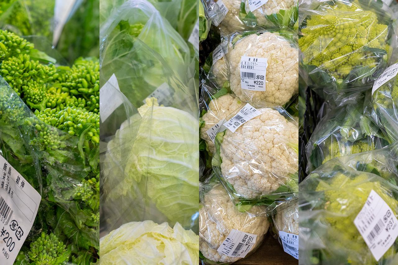 〈すかなごっそ〉が扱う野菜たち